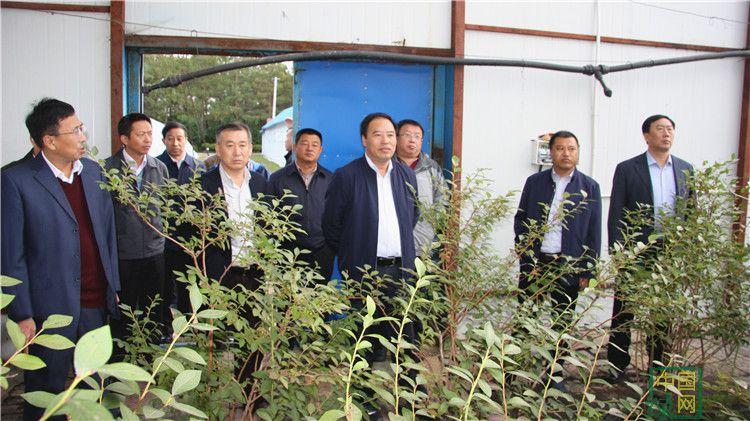 陈佰山到大杨树林业局调研指导工作