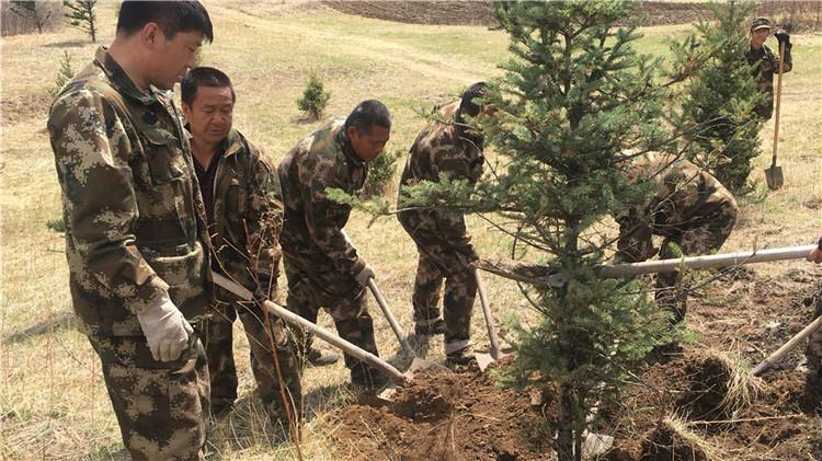 库亚林场青年志愿者服务队开展义务植树活动