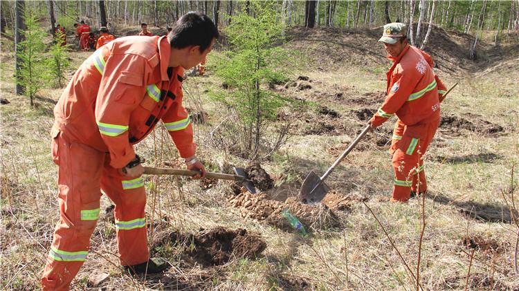 克一河林业局防火办美化绿化生态环境