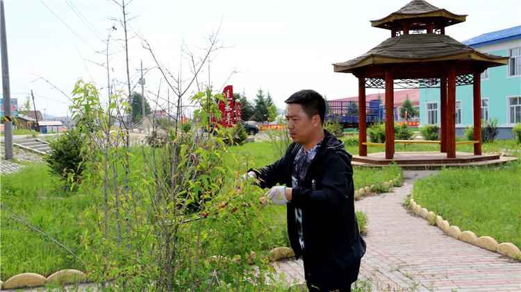 吉文林业局防火办开展美化园林活动