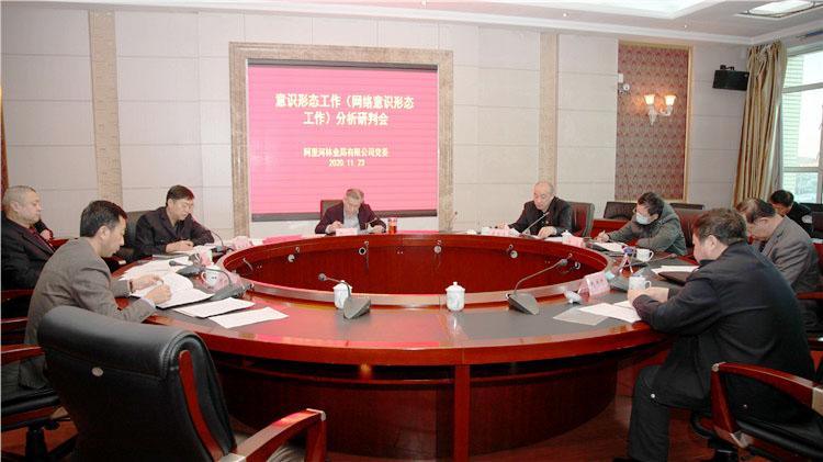 阿里河林业局有限公司党委召开意识形态工作(网络意识形态工作)分析研判会