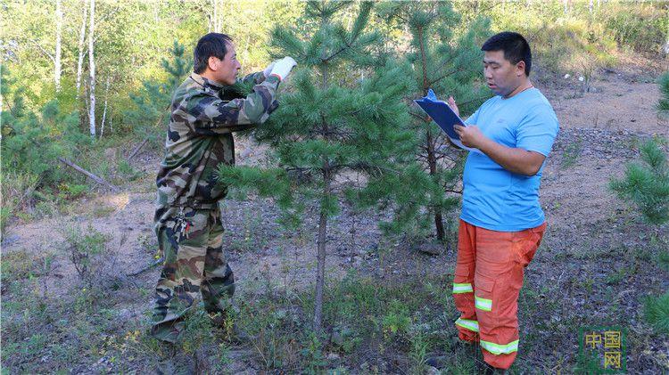 毕拉河林业局开展秋季调查确保生态安全