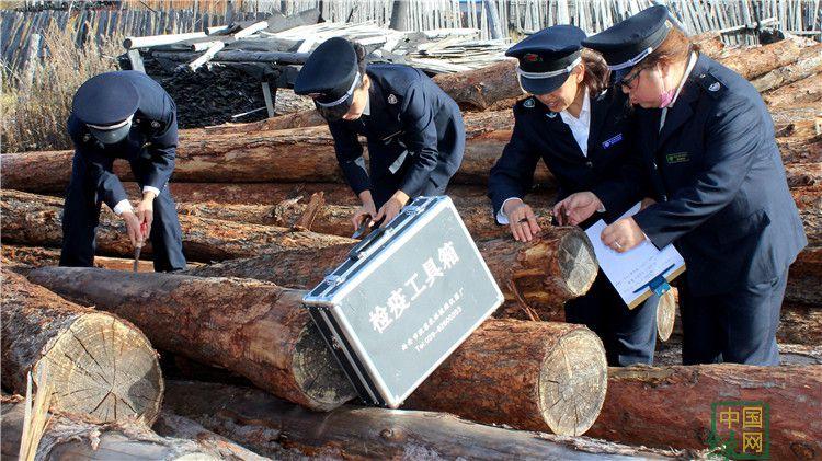 库都尔林业局森防站对木材加工厂开展检疫工作