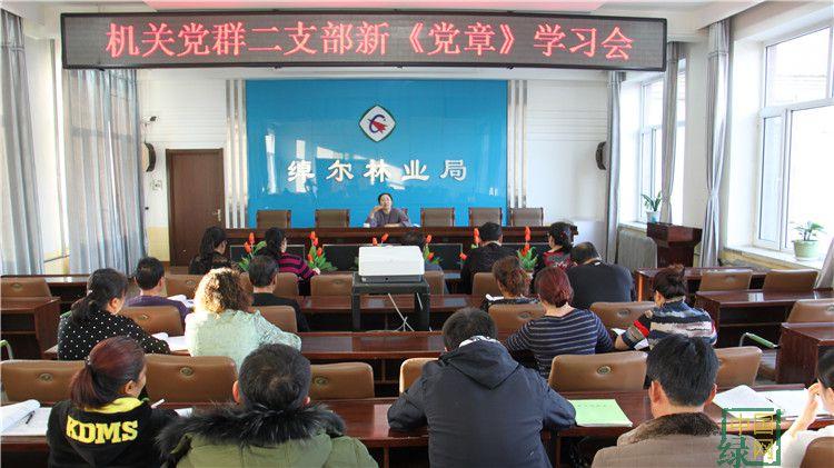 绰尔林业局组织机关党群二支部学习新《党章》