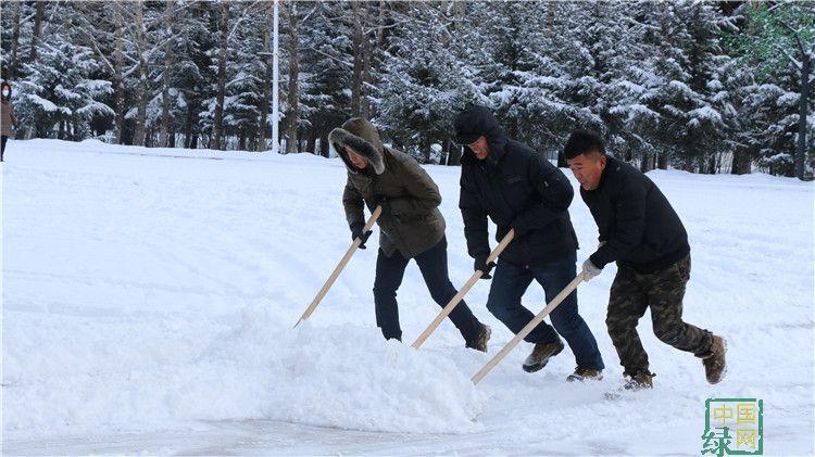绰源林业局组织全局党员干部职工清理路面积雪