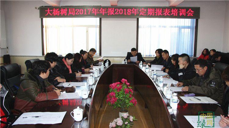 大杨树林业局组织召开2017年年报2018年定期报表培训会