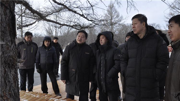 """国家林业局调研组一行到图里河林业局调研"""""""