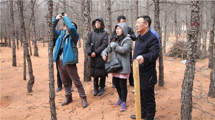 中国林科院调研组到乌尔旗汉林业局调研