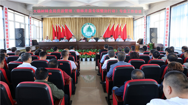 大杨树林业局召开资源管理专业工作会议