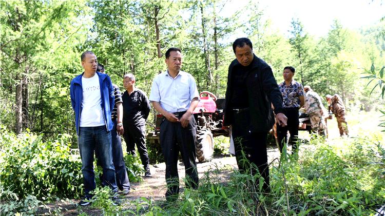 绰源林业局开展安全生产隐患排查专项活动