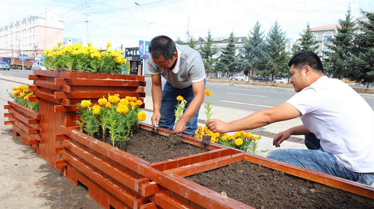 大杨树林业局用鲜花扮靓办公环境
