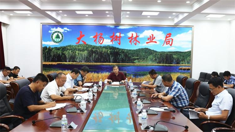 大杨树林业局党委召开第三次巡视整改调度会