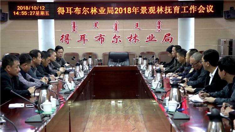 得耳布尔林业局召开2018年景观林抚育工作会议
