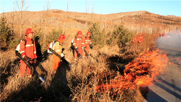 库都尔林业局开展打烧防火隔离带工作