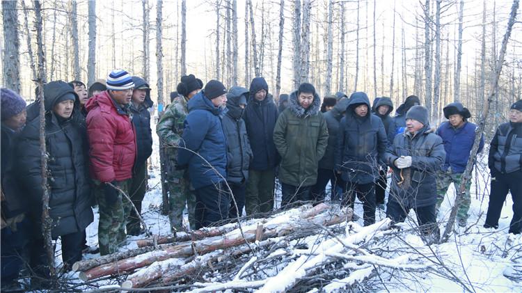 阿龙山林业局举办森林抚育示范林观摩会