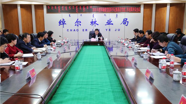 绰尔林业局召开2018年度科场级党组织书记抓基层党建工作述职评议会议