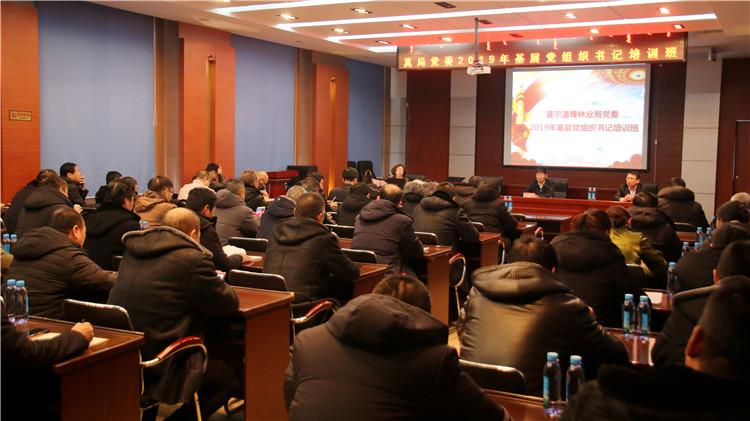 莫尔道嘎林业局党委举办2019年度基层党组织书记培训班