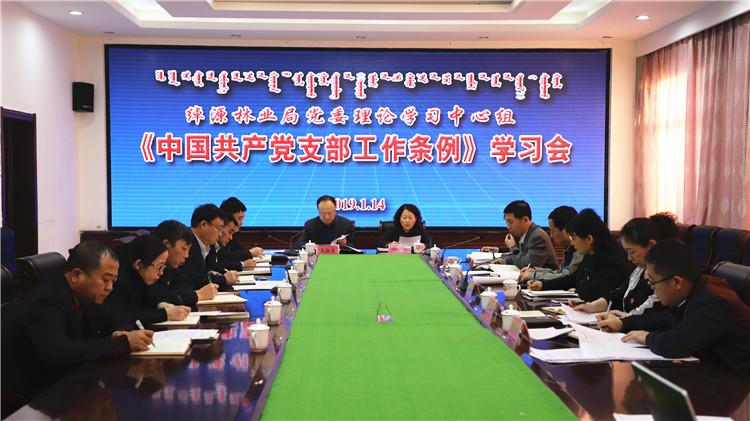 绰源林业局党委中心组学习《中国共产党支部工作条例》