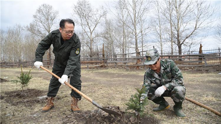 图里河林业局开展大型义务植树活动