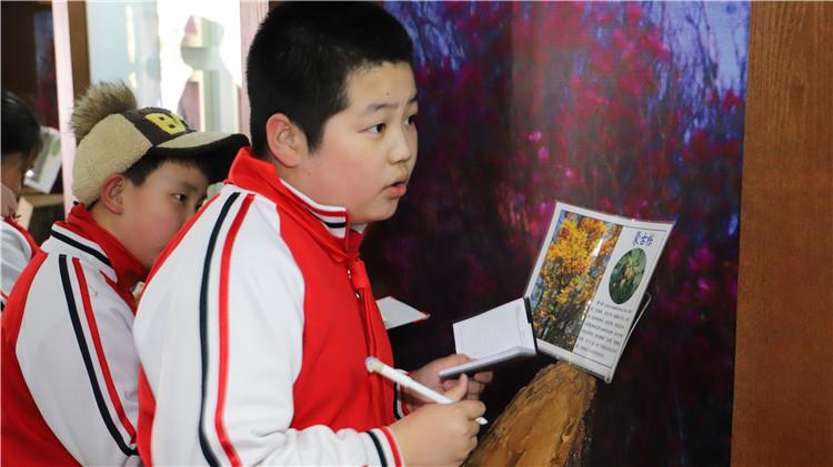 绰源林业局组织小学生参观自然生态馆