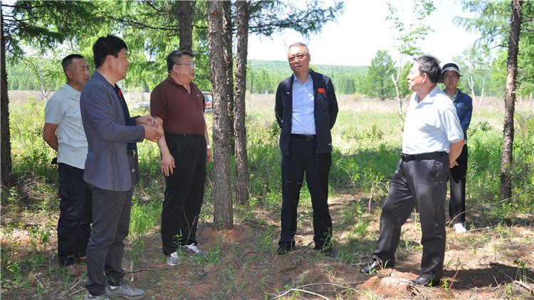 国家林草局资源司副司长李达到乌尔旗汉林业局调研督导工作