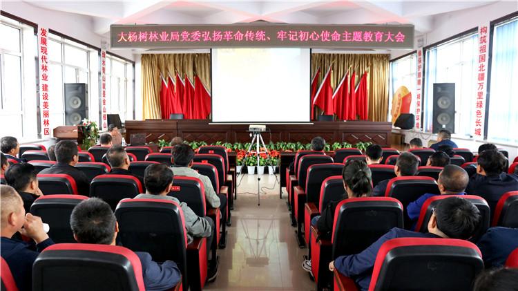 """大杨树林业局党委召开""""弘扬革命传统、牢记初心使命""""主题教育大会"""