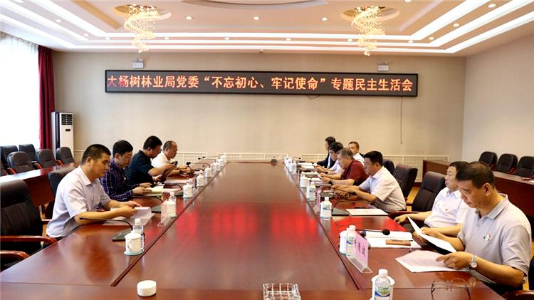 """大杨树林业局党委召开""""不忘初心、牢记使命""""专题民主生活会"""