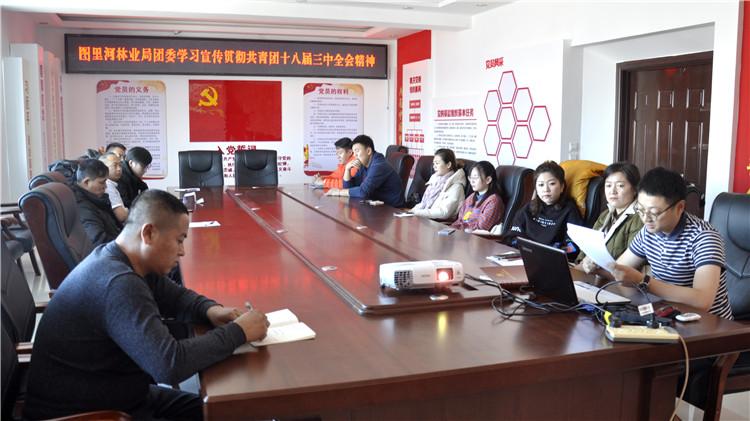 图里河林业局团委学习传达共青团十八届三中全会精神