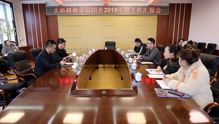 林区共青团工作考核组到大杨树林业局开展年终考核
