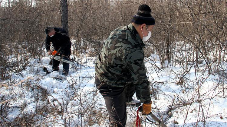 满归林业局有序推动森林经营复工复产