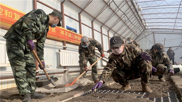 大杨树林业局战疫情备生产 不负好时光
