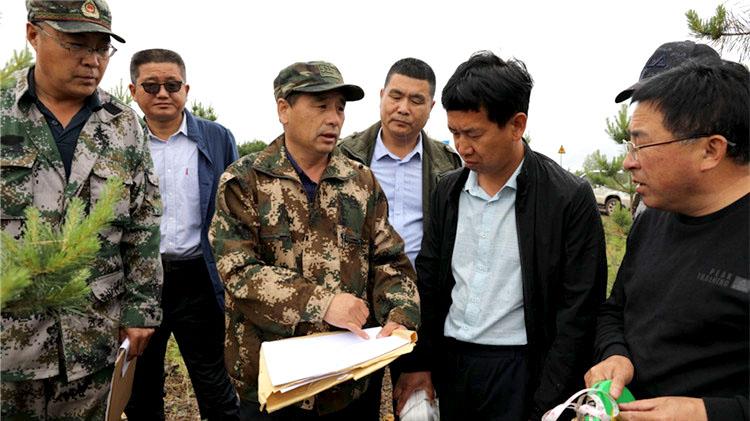 管理局碳汇经济高质量发展调研组深入大杨树林业局调研指导