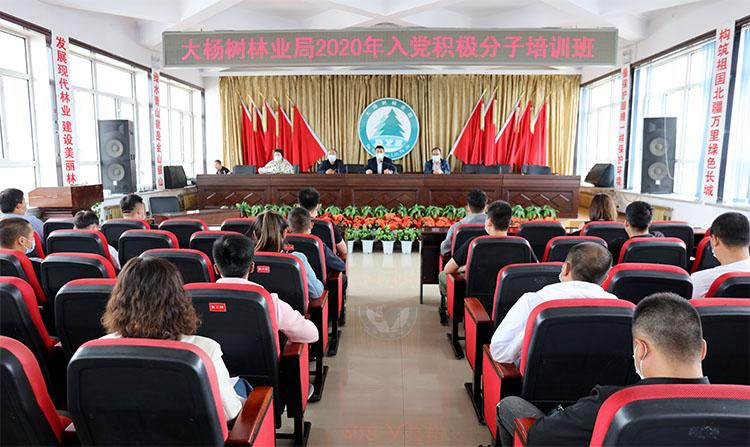 大杨树林业局举办2020年入党积极分子培训班
