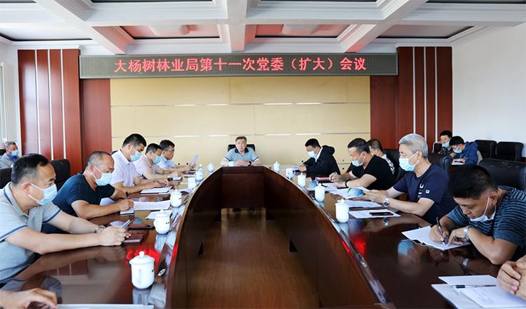 大杨树林业局召开第十一次党委(扩大)会议