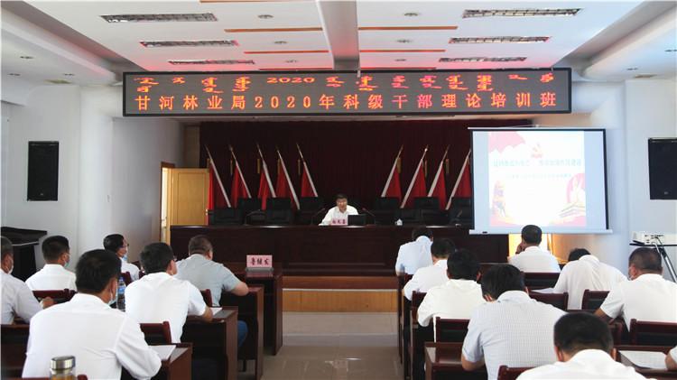 甘河林业局举办2020年科级干部理论培训班