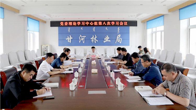 甘河林业局党委中心组召开《习近平谈治国理政》第三卷学习研讨会