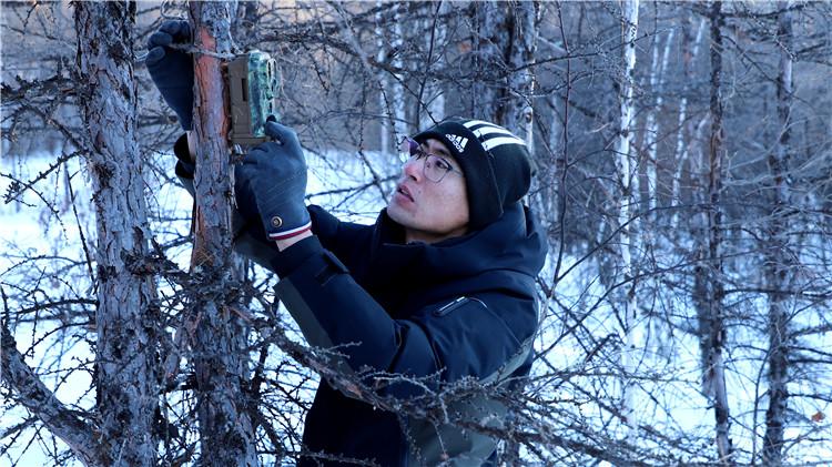 库都尔林业局有限公司布设红外相机监测黑龙江源头水源地野生动物