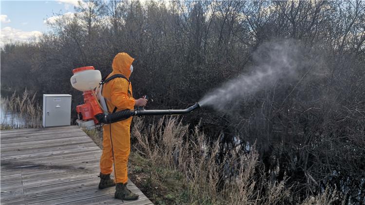 图里河森工公司开展森林病虫害防治工作
