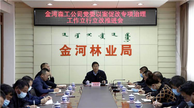 金河森工公司党委召开以案促改专项治理工作立行立改推进会