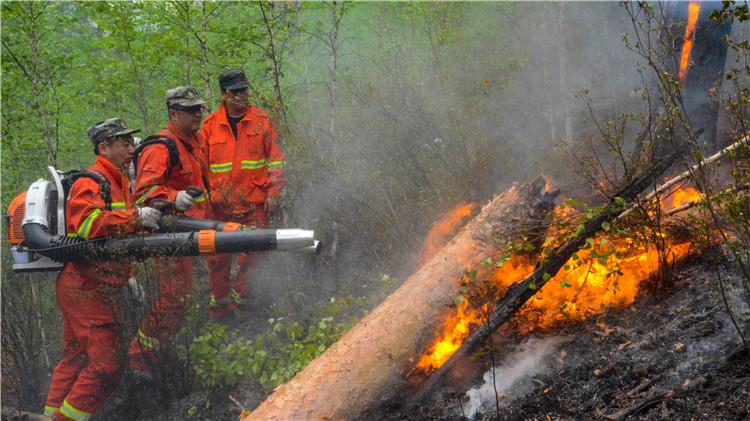 汗马保护区森林火灾正在奋力扑救中