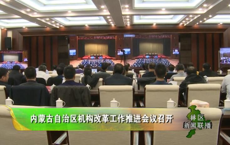 内蒙古自治区机构改革工作推进会议召开