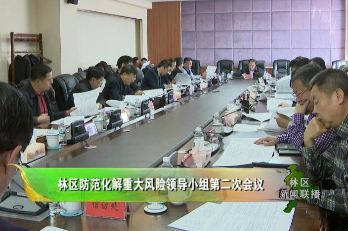 林区防范化解重大风险领导小组第二次会议