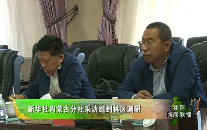 新华社内蒙古分社采访组到林区调研