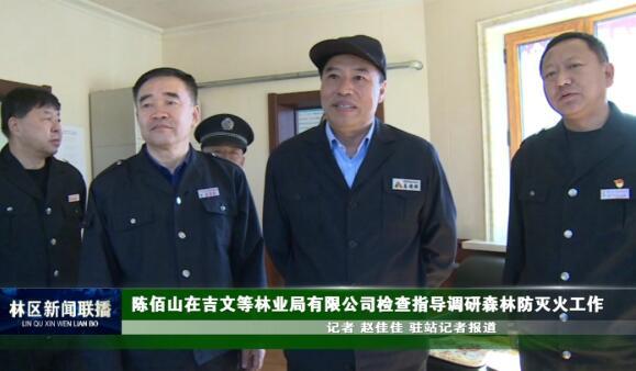 陈佰山在吉文等林业局有限公司检查指导调研森林防灭火工作