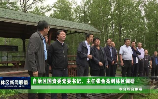 自治区国资委党委书记、主任张金亮到林区调研